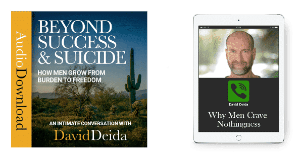 david deida the way of the superior man pdf